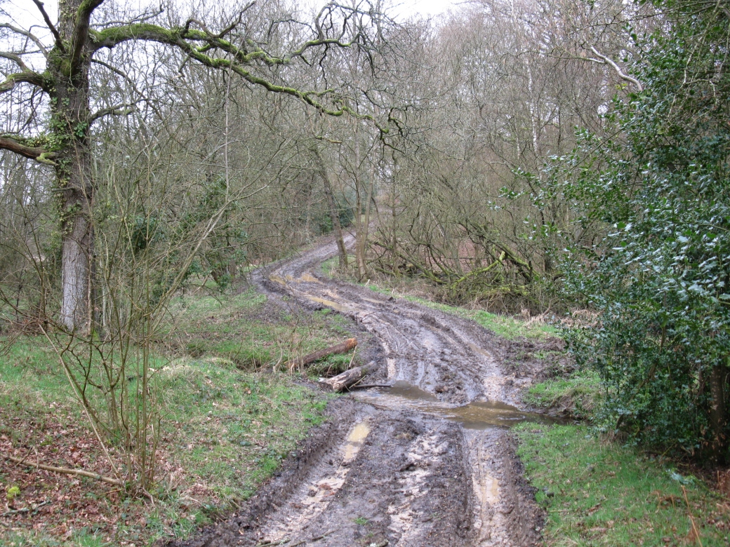Muddy_path_-_geograph.org.uk_-_1774022